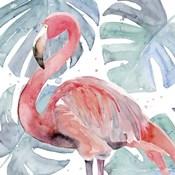 Flamingo Splash II