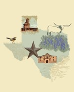 Illustrated State-Texas