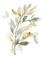 Sage & Sienna Leaves II