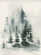 Misty Winter I