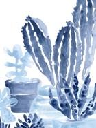 Indigo Succulent I