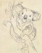 Outback Sketch II