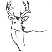Minimal Deer I