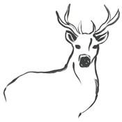 Minimal Deer II