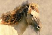 Blended Horse I