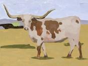 Longhorn Cattle I