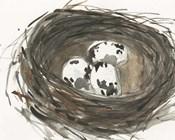 Nesting Eggs I