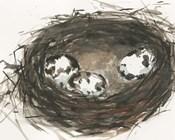 Nesting Eggs II