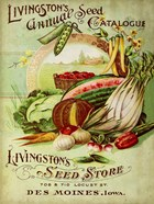 Antique Seed Packets VII