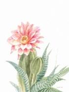 Pastel Desert II
