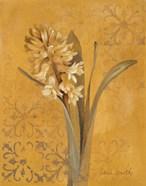 Hyacinth I