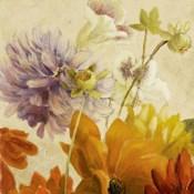 Early Bloomers II