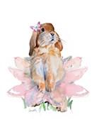 Ballet Bunny III