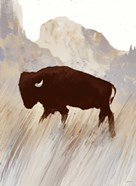 Buffalo Sunset Hill II