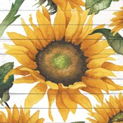 Happy Sunflower I