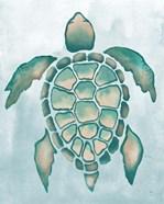 Aquatic Turtle I