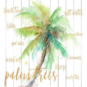 Vacation Palm