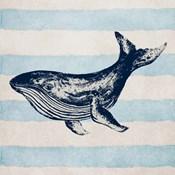 Surf Side Stripe IV