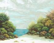 Seashore II