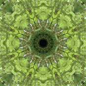 Colorful Kaleidoscope 11
