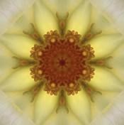 Colorful Kaleidoscope 21