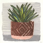 Potted Agave II