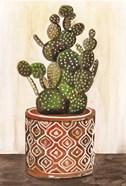 Potted Cactus I