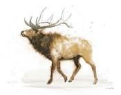 Elk v.2 Full