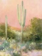 Sunrise Desert II
