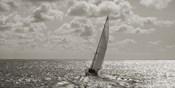 Sailing (detail)