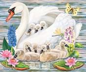 Mother Swan