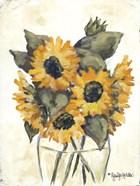 Harvest of Sunflowers