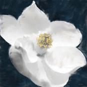 Painted Magnolia
