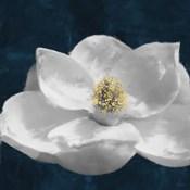 Painted Magnolia II