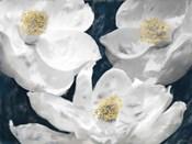 Painted Magnolias