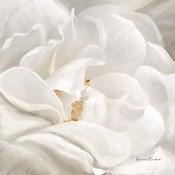 Neutral Rose No. 1