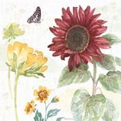 Sunflower Splendor VI