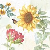 Sunflower Splendor VIII