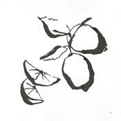 Limes BW