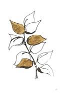 Leafed VIII