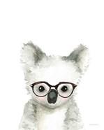 Koala in Glasses