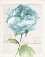 Antique Floral II Blue Vintage