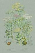 Flowering Plants II Green Linen