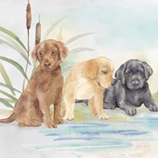 Woodland Dogs III
