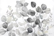 Eucalyptus Leaves landscape neutral