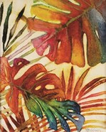 Tropic Botanicals I