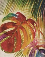Tropic Botanicals IV