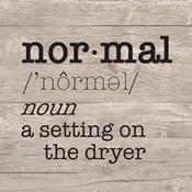 Laundry Room Humor II-Normal