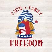 Patriotic Gnomes II-Freedom