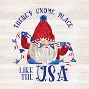 Patriotic Gnomes III-USA